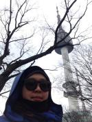 The Namsan or Seoul Tower